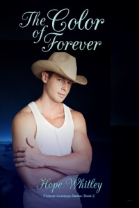 cowboy ben connors book two